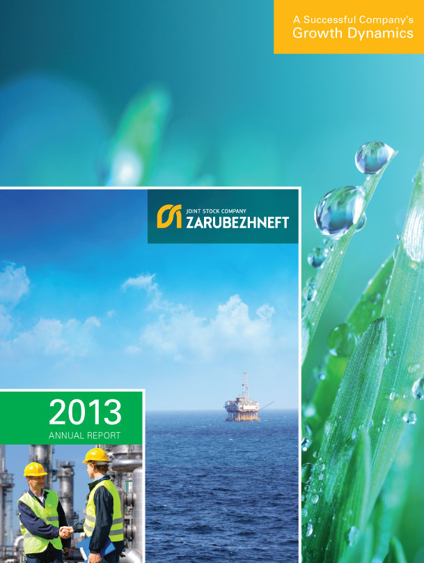 >Annual report for 2013